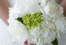 Bouquets / by White Sand Weddings