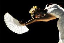 Flamenco / Flamenco  / by Wink Artisans