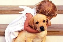 Dogs: With Kids / by Judi Astalos-Keller