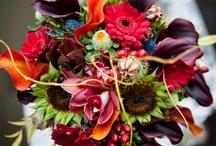 Wedding! DIY / Someday...  / by Megan Clark