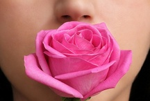 Take time to smell the roses / by Marguerite Thompson