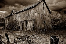 Barns / by Cindy Johnson