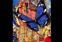 Butterflies  / by Jane Donnelly