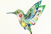 Hummingbirds / by Candy Waldman Crawford