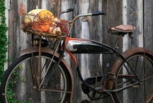 Autumn Inspirations / by Kim Cole