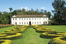 Coffee plantation estates in Brazil / Historic coffee plantation estates in Brazil / by Ana França