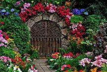 Doors,  Entries & Gates / by Sue Frazier