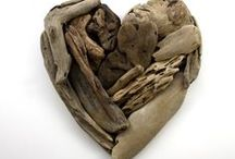 Driftwood / by Sue Frazier
