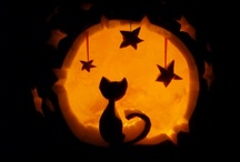 Halloween  / by Leslie Harvey