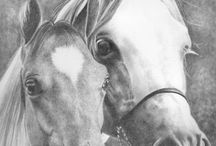 Art: Horses and others / by Lisa Swank