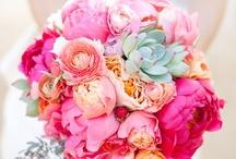 Wedding Ideas / by Demaree Bruck