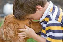 Why Every Kid Needs a Dog / by Glenda Roslund