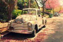 Cars... / by Madie W.