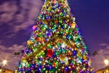 Christmas trees from around the world / by Lisa Marie P.