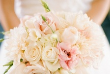 Wedding - Bouquets / by Kati Witzig