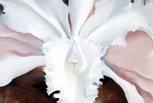 Art - Georgia O'Keeffe / by Frances Bland