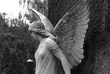 Angels / by Emma Walling