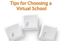 Virtual School Experiences / Learn how virtual school works for grades K–12 by watching these student stories and reading about online school experiences! Visit www.connectionsacademy.com to view upcoming information sessions to get more details. / by Connections Academy