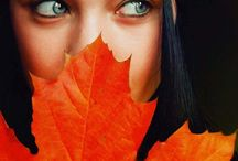 Autumn Splendor / by Jan Reichard