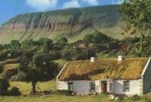Irish / by Peggy Bromley