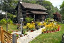 A lil Piece of Heaven / Cabins, Cabins, Cabins <3 / by Dawn ~ Sun Baked Treasures