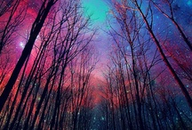 Pretty Pretty / by Christina Lockwood