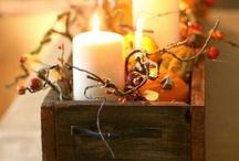 Fall Days / by Susan Johnson-Tutt