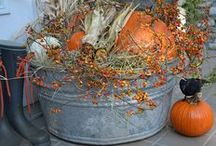 fall / by Carol Pridgen