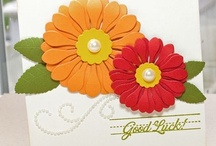 Cards - Good Luck / by Kathy Weber