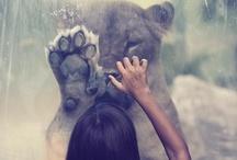 Just Feel It. / by Ainara Blancas