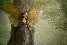 Wood sprite / by Susan Sancomb Photography