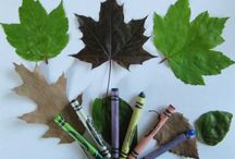 Nature Theme  / Education: Nature Lesson Plan / by Stephanie Smith