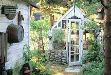 Gardeny / by Wendy McDonald