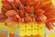 Spring and Easter foods and party decorations  / by Kelly Downing - TinySophisticate & Making It Paleo