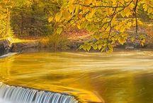 I love  Michigan / by Tami Morrow