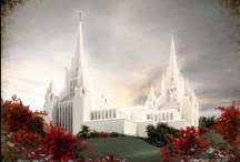 Places of Worship / by Dana Roper