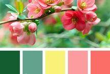 ♡ Colour Hues ♡ / by Lydias Treasures - Lisa