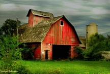 Barn Love / by Judy ♥ daily yarns