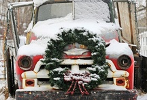 Christmas Season / by Judy ♥ daily yarns