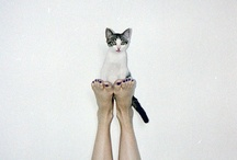 cat people / by Lady Desidia