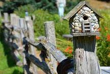 Garden Fences / by Judy ♥ daily yarns