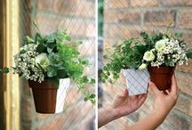 Unique Ideas / We love innovation via thinking outside of traditions! / by City Soles