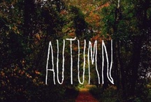 Autumn / Fall / by Jenny Holiday of Everyday is a Holiday
