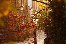Autumn Time / by Traveller's Magazine