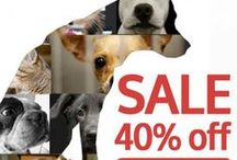 Women that love Animals & a great Sale! / Women's Animal Saving Sale!! You can save animals and get a discount at the same time. Give to save an animal in need and we will give you 40% off! Every product sparks a $5 donation. / by Hendrick & Co.