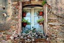 Window View / by Robin Romans