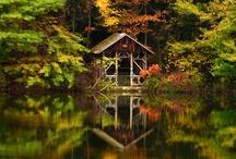 cabin fever / by Marlene Keller