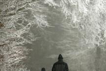 Winter Wonderland / by Sandra Lenins