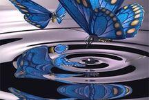 Beautiful Butterflies / by Sandra Lenins