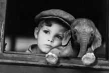 elephantssss<3 / by Helen Ginski